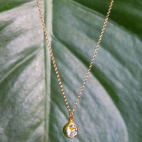 Abalone Dainty Shell Necklace - Gold/Round
