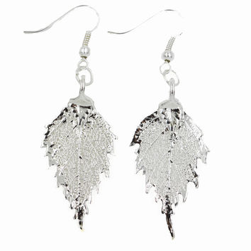 Real Leaf Hook Drop EARRINGS BIRCH Leaf Dipped in Silver