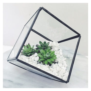 Handmade small square terrarium greenhouse in glass and black solder - SORT cement london