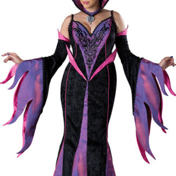 Deluxe Fairytale Witch Costume
