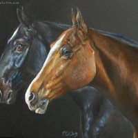 Horses portrait, Original pastel drawing on black paper, Black and brown horse, Decorative, impressive
