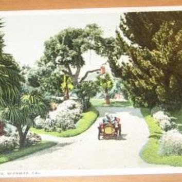 Vintage Entrance Drive Miramar California Postcard
