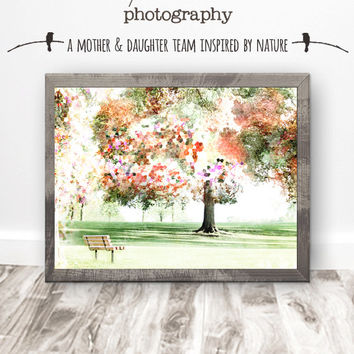 Park Landscape Print Download, Confetti Collection, Tree Photography, Rustic Modern, Teen Wall Art, Photo Art, Nature, Colorful, Textured