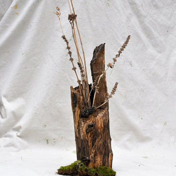 Natural Tree Vase Dried Floral Arrangement in by TheVelvetBranch