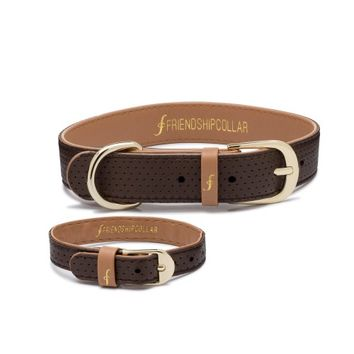 The Classic Pup: Heritage – FriendshipCollar