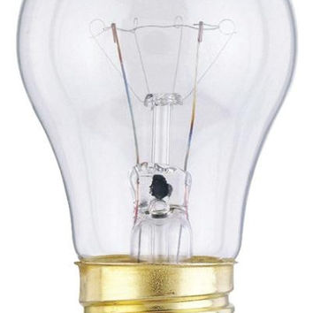 15 Watt A15 Incandescent Light Bulb (2 Pack)
