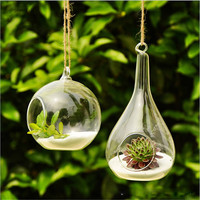 2016 Hot New Clear Glass Round With 1 Hole Flower Plant Hanging Vase Container Home Office Wedding Decor Terrarium