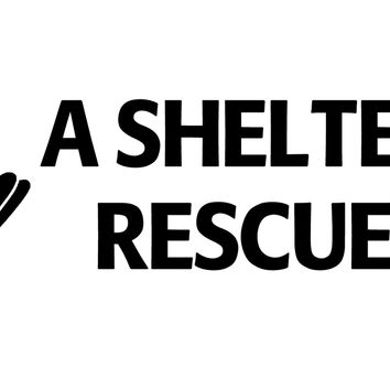 A shelter dog rescued me