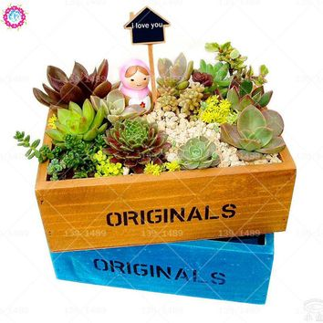 100pcs mixed succulent seeds Indoor bonsai seeds Rare lithops perennial plants balcony potted for home room decor best packaging