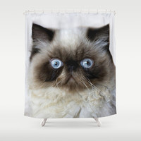 Funny Ragdoll Cat Shower Curtain by Erika Kaisersot
