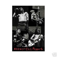 Red Hot Chili Peppers Live Music Poster