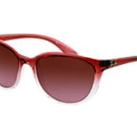 Ray-Ban RB4167 849/1459 sunglasses