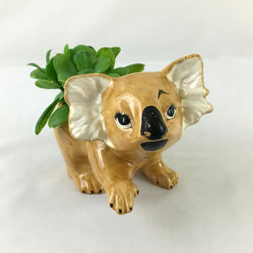 Adorable Koala Ceramic Planter Blonde Koala Succulent Planter Australian Animal Decor Ceramic Glazed Koala Bear Plant Planter Outback Decor