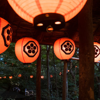 Japanese paper lanterns in the foret by Nagarekawa