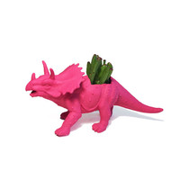 Up-cycled Dragonfruit Pink Triceratops Dinosaur Planter