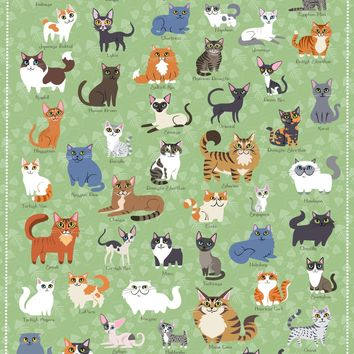 Cats of America, 500 Piece Jigsaw Puzzle