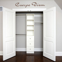 "23"" Carpe Diem Vinyl Wall Decal Sticker Art"