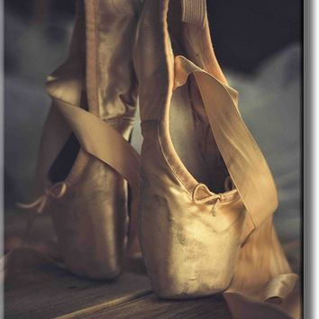 Ballet Shoes Picture on Acrylic , Wall Art Décor, Ready to Hang