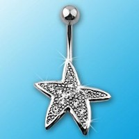 "Rodium Plated Navel Ring with Pave Gem Starfish - 14GA 3/8"" Long: Jewelry: Amazon.com"