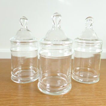 Three cylindrical apothecary jars for terrariums, display or storage