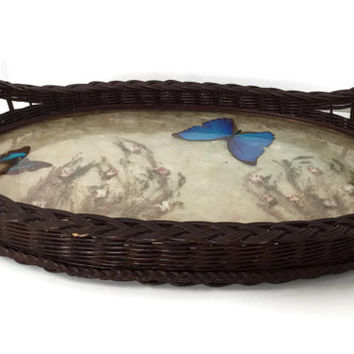 Antique Wicker Tray with Butterflies and Dried Flowers Preserved in Glass Arts and Crafts Period c1880-1910