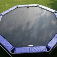 Magic Circle - 16 ft. Octagon Trampoline in Violet