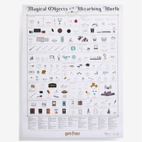 Harry Potter Magical Objects Poster