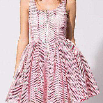 Pink Mesh Sleeveless Princess Mini Skater Dress with Front Zipper