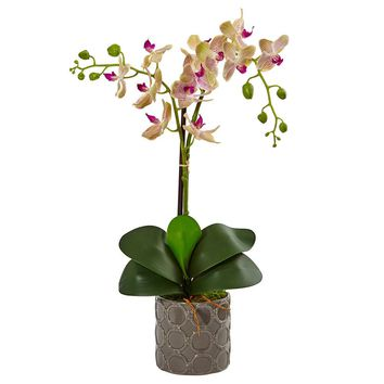 Silk Flowers -Double Phalaenopsis Orchid In Gray Ceramic Pot Arrangement