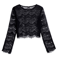 Black Slit Cuff Flare Sleeve Sheer Lace Cropped Top