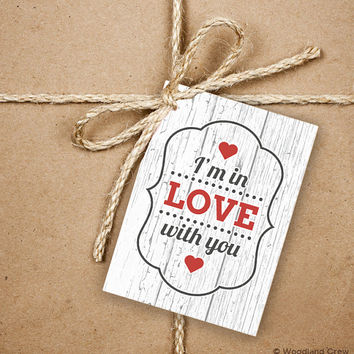 I'm In Love With You Gift Tags, 9 Valentine's 2.5 x 3.5 Hang Tag, Love Message With Hearts Product Tag With Jute Twine, Love Greeting
