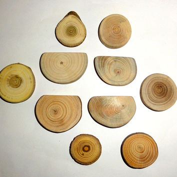 Natural line of essential jewelry findings. Various wood mix slices, jewelry making supplies. Jewelry supply for brooches, pendants, rings..