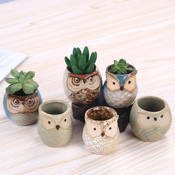 WHISM Creative Mini Ceramic Cartoon Owl Shape Flower Pots Glossy Rough Surface Succulent Planter Home Garden Office Decoration