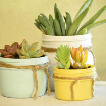 Set Mason Jars with Succulents Whit, Mint and Yellow- Send as a gift, Wedding or Baby Shower Centerpiece