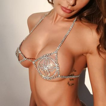 Sexy Diamond Rose Crystal Bra