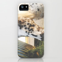 Horse iPhone & iPod Case by Amber Rose
