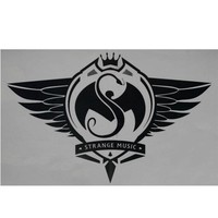 Strange Music - Silver Sticker 12.5
