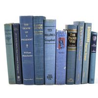 Vintage Book Decor / Wedding Prop/ Vintage Book Collection / Blue