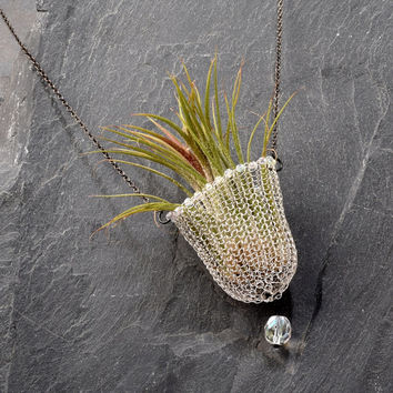 Air Plant Holder - Wearable Planter, Wire Crochet Beaded Necklace, Living Jewelry