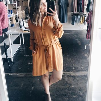 Bailey Button Down Shirt Dress