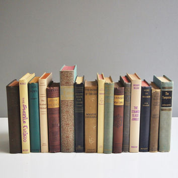 Vintage Shabby Book Collection - Purple, Green and Beige