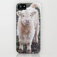 A Baby Highland Cow iPhone & iPod Case by Karl Wilson Photography