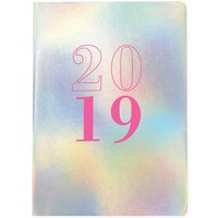 Holographic Shine Deluxe Weekly 2019 Planner