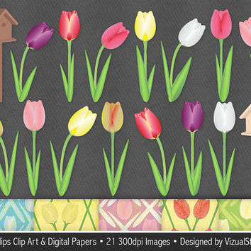 Tulip Clip Art and Digital Paper Bundle, colorful digital tulips clipart, spring flowers, bird houses and tulip papers, Buy 2 Get 1 Free