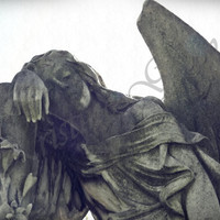 Angel Cemetary Headstone Queen of Heaven Cemetary Chicago Photography