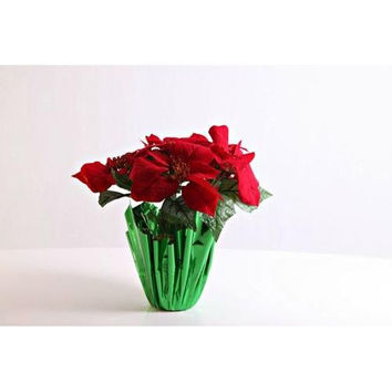 5 Poinsettia Flowers in Gold Pot