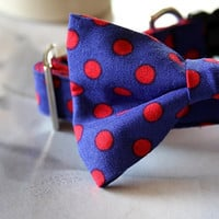 Blue Red Polka Dot Bow Tie Dog Collar 3/4 Inch Wide