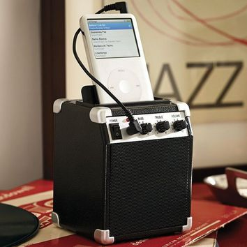 iPod- Classic Mini Amplifier | Pottery Barn