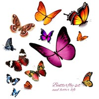 3D Car Stickers Beautiful Butterfly Personality Creative Waterproof Car Decals Removable Automobiles Motorcycle Car Accessories