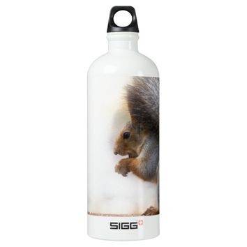 Squirrel on a bench and some nuts aluminum water bottle